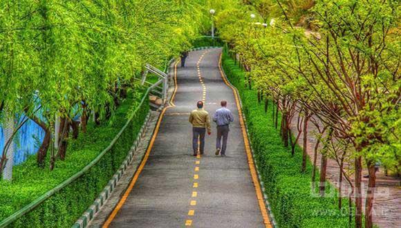 بوستان نهج البلاغه تهران، دهکده گردشگری(