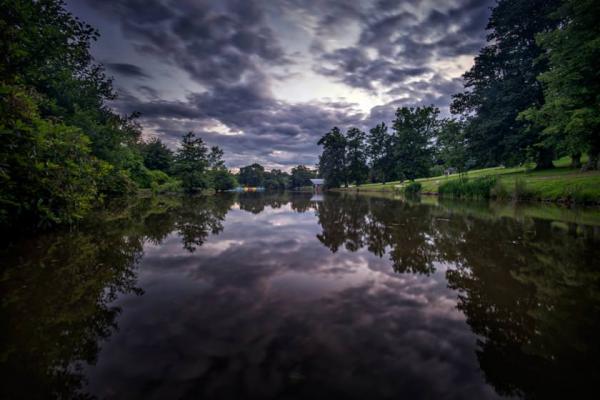 گشت جنگلی در رودخانه سنت جانز فلوریدا